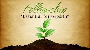 av fellowship imagesGTGIHSOT